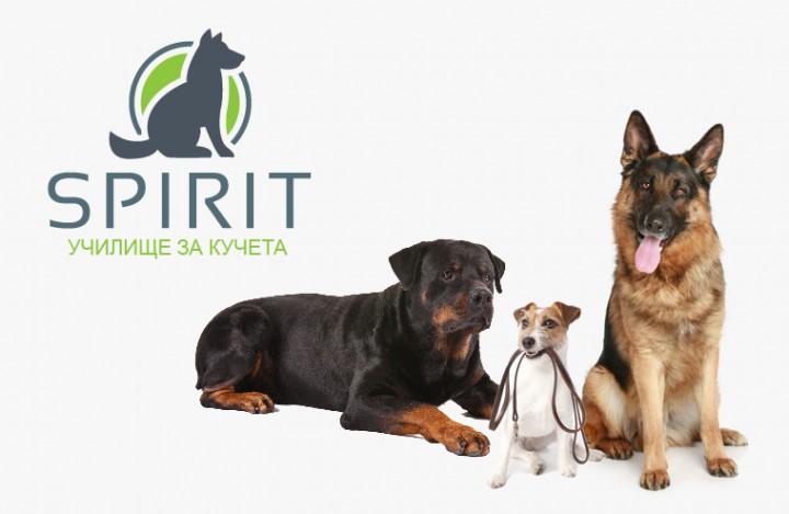 Училище за кучета Spirit